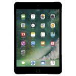 Waste Advantage-iPad mini 4 2