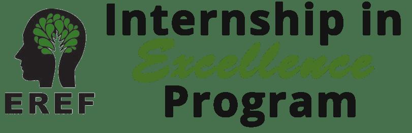 internship logo 3